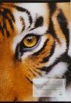 Hangjegy füzet tigris mintás A/5 36-32