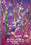 Spirálfüzet T-Creativ A4 70 lapos vonalas Colour of Nature