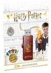 """EMTEC Pendrive, 32GB, USB 2.0, EMTEC """"Harry Potter Gryffindor"""""""